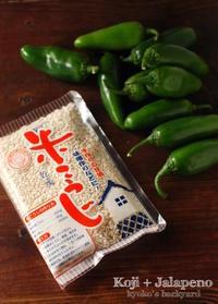 ハラペーニョ醤油麹を仕込みました - Kyoko's Backyard ~アメリカで田舎暮らし~