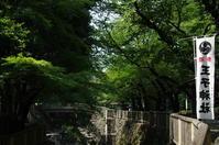 神社巡り『御朱印』王子神社 - (鳥撮)ハタ坊:PENTAX k-3、k-5で撮った写真を載せていきますので、ヨロシクですm(_ _)m