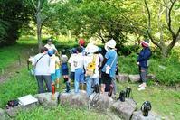 新たな発見はありましたか? - 千葉県いすみ環境と文化のさとセンター