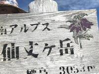 仙丈ヶ岳 180805 今年2度目です - 週末は山にいます