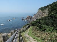 Cape Kamoda|蒲生田岬 - 旅年譜  Chronological Record of Junya Nakai's travel