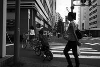 kaléidoscope dans mes yeux 2018 古町 #34 - Yoshi-A の写真の楽しみ