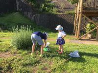 忍耐と試練の夏休み - スール