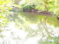 足立区の街散歩 328  「葛飾区篇」 - 一場の写真 / 足立区リフォーム館・頑張る会社ブログ