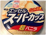 お散歩帰りの暑さ対策 - キャラメルエッセンス~caramel essence~