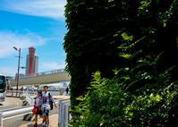 神戸物語(ハーバーランドから中華街へ)① - 写真の散歩道