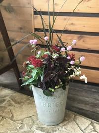 8月の寄せ植え教室の準備 - 小さな庭 2
