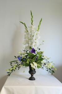 抜けていました。NHKの6月の花は「ルイ15世」 - クレッセント日記