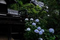 山崎聖天 - 写真部