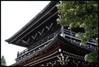風鈴市 -9 - Camellia-shige Gallery 2