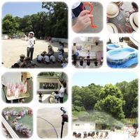 前期夏期保育 - ひのくま幼稚園のブログ