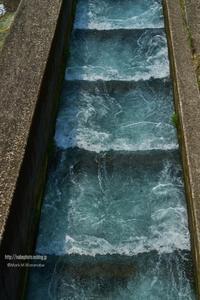 水の階段 - Mark.M.Watanabeの熊本撮影紀行