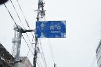 あ、きた。「いぬ年」。 冬の秋田もふもふツアー その21 秋田犬博物館その1 - りきの毎日