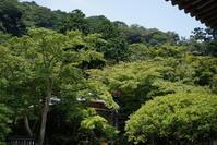 8.4 円覚寺 - 週末はソニーα6500でぶらり鎌倉・湘南散歩!