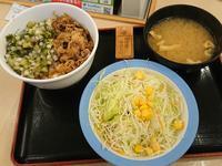 8/8  山形だし牛めし並¥490 + 生野菜¥100 @松屋 - 無駄遣いな日々