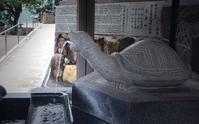 ぴあはぁと展☆亀川散策 - poem  art. ***ココロの景色***