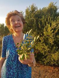 オリーブ農園の女性オーナー - シークレットスペイン