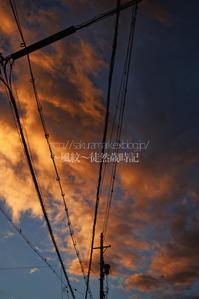 台風接近の夕焼け空。 - ~風紋~徒然歳時記