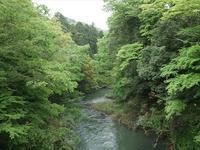(石川県・山中温泉)鶴仙渓川床 - 松下ルミコと見る景色