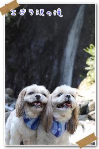 2018年8月4日 エビラ沢の滝@神奈川県相模原市 - 週末は、愛犬モモと永吉とお出かけ!Kimi's Eye