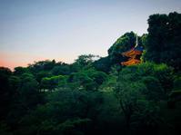椿山荘【ゆずこ さん】 - あしずり城 本丸