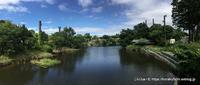 大森山のトナカイたちの夏2018~その3 科学の力でトナカイを守る - こらくふぁーむ