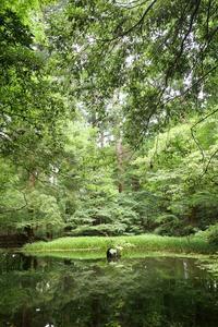 いってきました!金沢②福井県・勝山 - 月一ブログ4