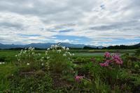 8月9日 田畑のある風景① - 光画日記
