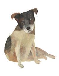 今日の絵「横座り犬」 - vogelhaus note
