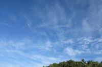 残暑 - 三宅島風景