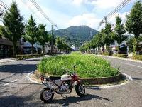 皿倉山 - NATURALLY