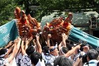 獅子頭の鼻をつかむと「次回の祭まで女に不自由しない」という  言い伝えがあります(佃の住吉神社) - 旅プラスの日記