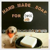 【飼い主様と愛犬のための手作り石鹸講座】のお知らせ - ふわりアロマ時間