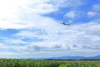 お盆シーズン突入 ~旭川空港~ - 自由な空と雲と気まぐれと ~ from  旭川空港 ~