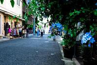 神戸物語(ハーバーランドから中華街へ)④ - 写真の散歩道