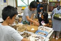 さとの夏遊び2日目 - 千葉県いすみ環境と文化のさとセンター