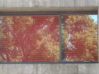 Reflection of window - はーとらんど写真感