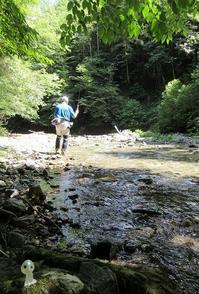 渇水の川が多い中、久し振りに石垣教授と渓流へ - アンパラなブログ   フライ、トラウトルアー編