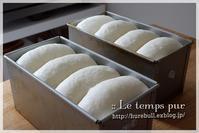 """ポイントを押さえて作る『基本の食パン』:生徒さまの素敵なパンをご覧ください♪ - 大阪 堺市 堺東 パン教室 """" 大人女性のためのワンランク上の本格パン作り """"  - ル・タン・ピュール -"""