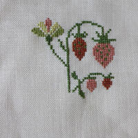 Dutch Strawberries 01 - Point de X のこと