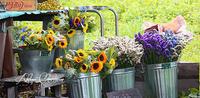 夏の高原の花屋さん - Atelier Charmant のボタニカル・水彩画ライフ