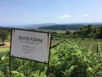 【ことりっぷ】初の北陸へ! 氷見、 SAYS FARM - casa del sole