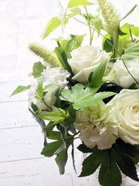 夏はやっぱりホワイト&グリーン - お花に囲まれて