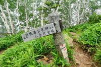 ***** 花の百名山アポイ岳 (810.2M)   下山 編 ***** - 風の便り