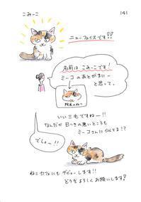 こみーこ - 今日もゆくねこ