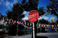 natsu - HTY photography club