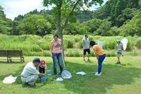 さとの夏遊び3日目  虫取り / ガサガサ - 千葉県いすみ環境と文化のさとセンター