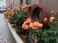 杉並区平和都市宣言30周年記念事業「アンネのバラに願いをこめて 朗読・アンネの日記」 - Swimmy日記