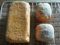 1斤食パン - sunny side