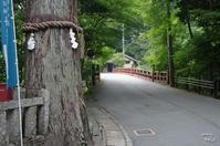 吉野郡 東吉野村を行く:03 川あそび - ぶらり記録(写真) 奈良・大阪・・・